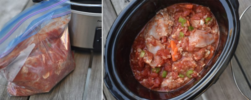 Slowcooker Chicken Ragu